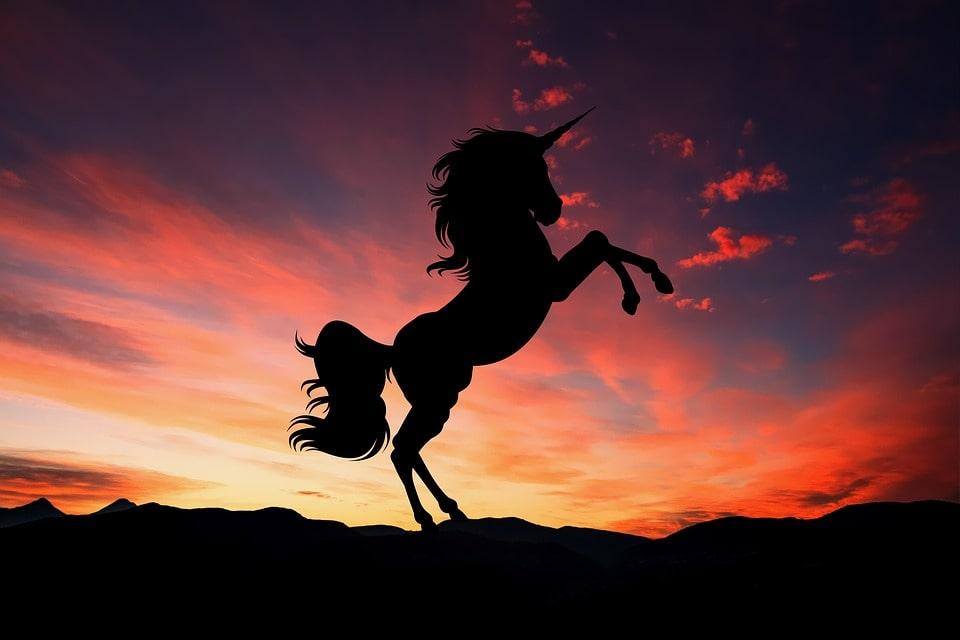 Myth of the Unicorn